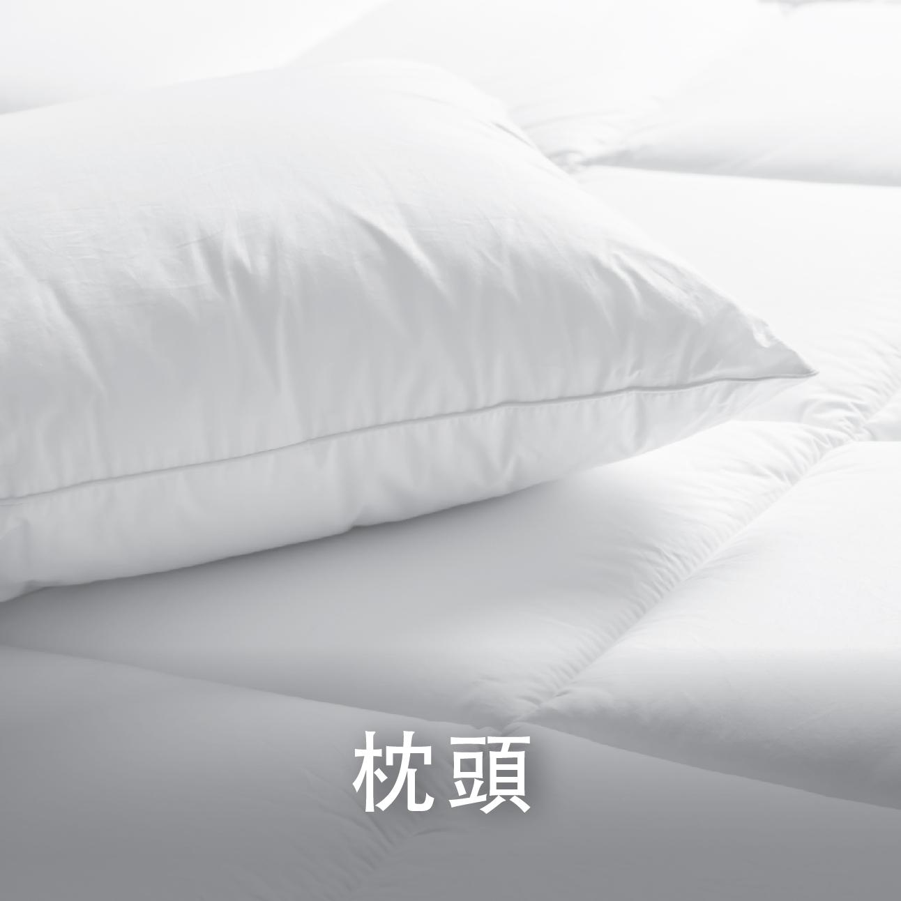 Catalogue_Banner310Wx310H_px-Pillow-chi