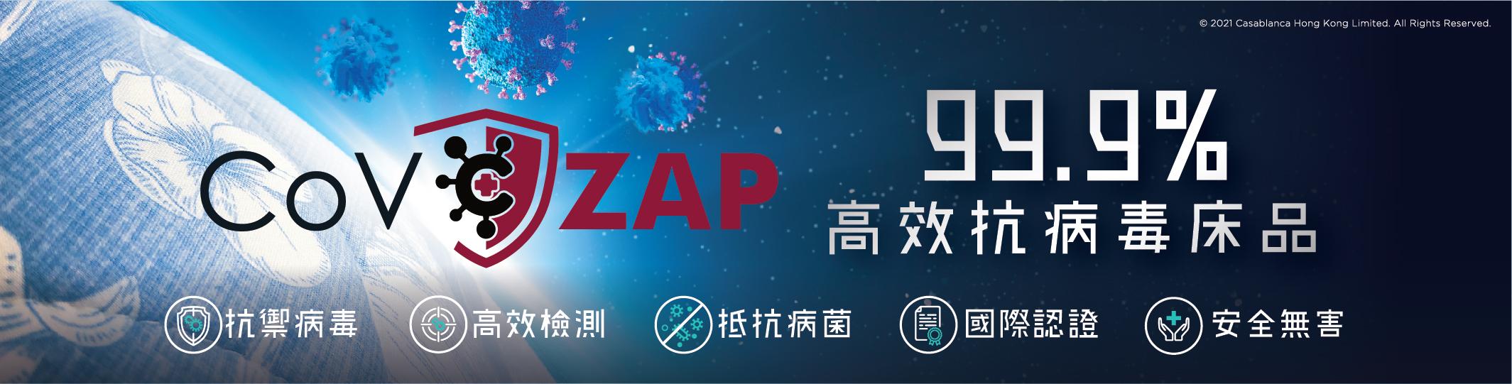 2021_CoV_ZAP_category_v1-02_1_